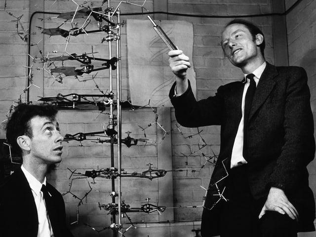 Watson und Crick mit grossem DNA-Modell