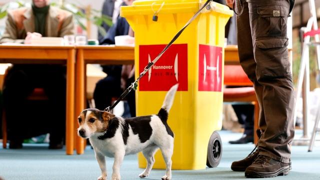 Ein Mann mit Hund stimmt ab in Niedersachsen.