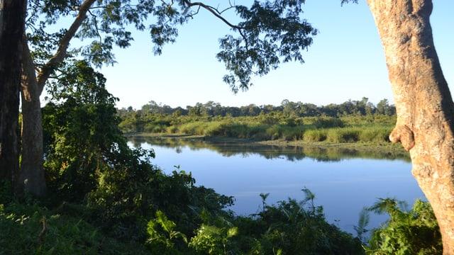 Im Osten des Kaziranga Nationalparks