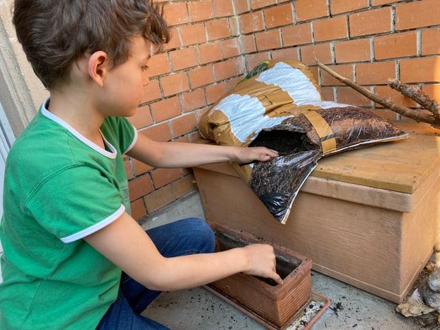 Junge füllt Kiste mit Erde.