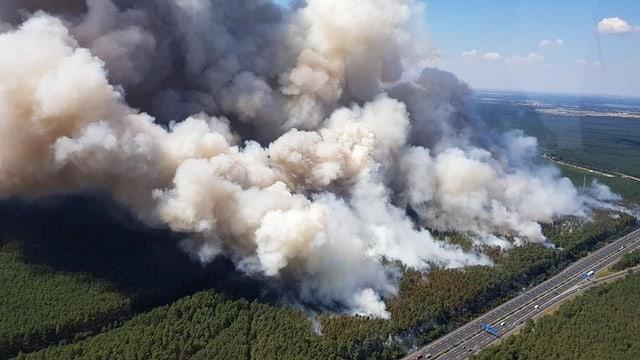 Waldbrand bei Potsdam