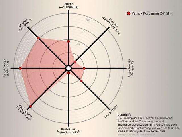 Die Ansichten von Patrick Portmann bei Smartvote.