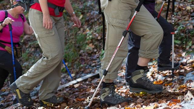 Frauen beim Wandern. Wanderschuhe und Stöcke.