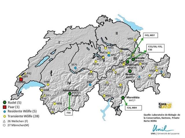 Carta geografica che mussa ils lufs identifitgads en la Svizra