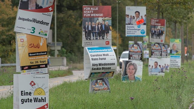 Diverse Wahlplakate stehen neben und übereinander aufgereiht entlang eines Weges.