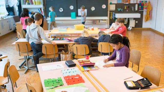 scolars en scola