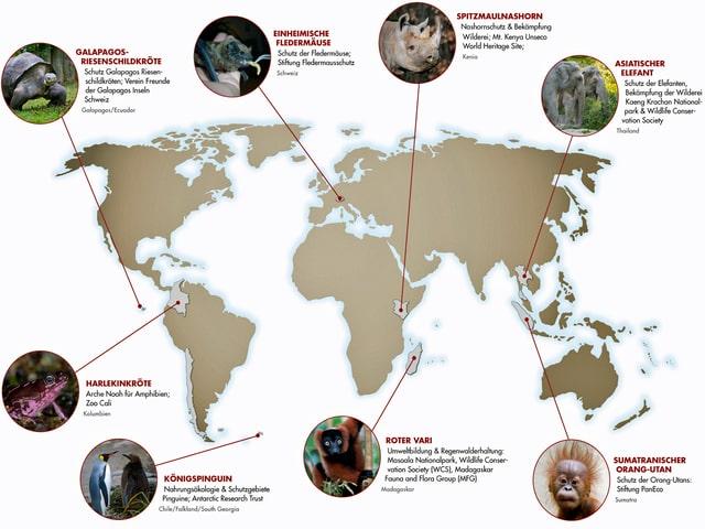 Karte mit den verschiedenen Projekten des Zoos Zürich.