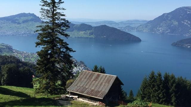 Blick über eine Hütte zum blauen Vierwaldstättersee, darüber ein wolkenloser Himmel.
