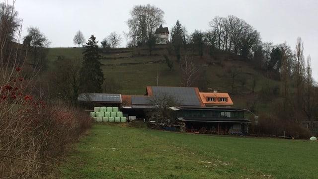 Ein Bild des Mooshof in Lenzburg. Der Hof liegt unterhalb des Schlosses.