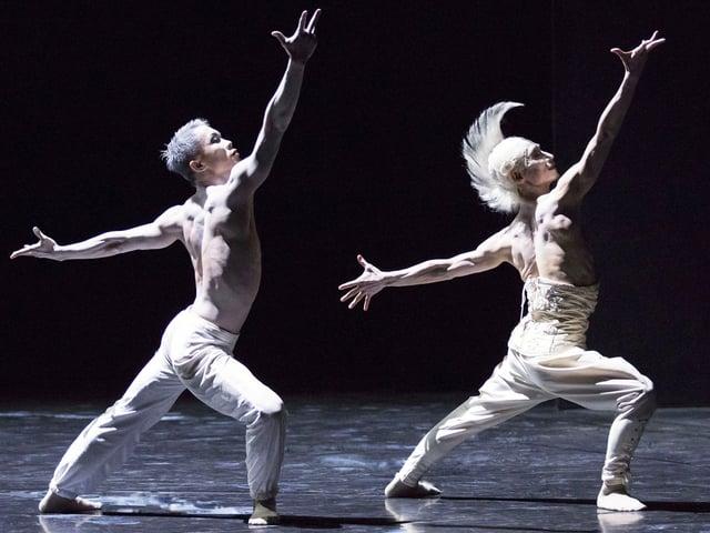 Zwei Tänzer in weissen Hosen mit nacktem Oberkörper strecken die Arme weit von sich.