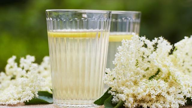verleiht dem Heissgetränk eine beruhigende Wirkung.
