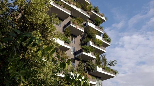Video «Faszination Wolkenkratzer: Bosco Verticale Mailand (3/4)» abspielen