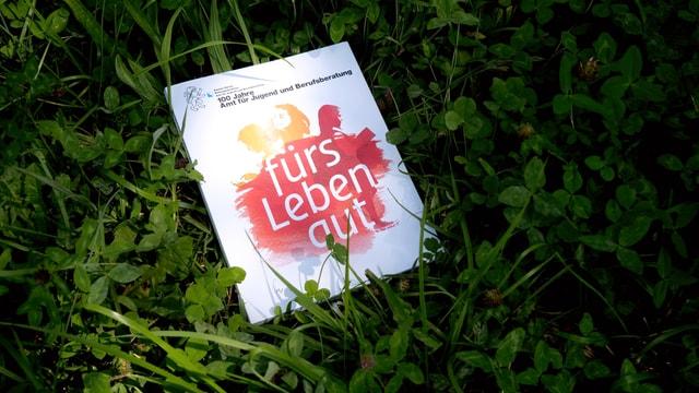 Ein Buch auf dem Rasen