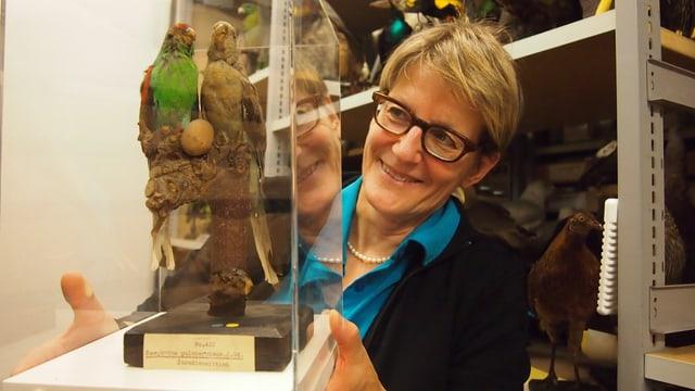 Britta Allgöwer, Direktorin des Naturmuseums Luzern mit ausgestopften Vögeln