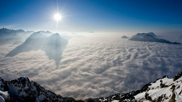 Blick vom Fronalpstock aufs Nebelmeer.