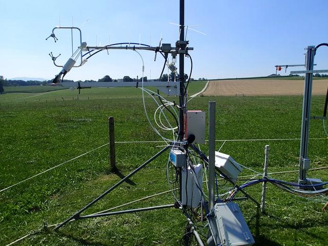 Die Geräte auf der Weide