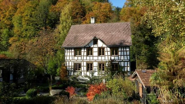 Ein Fachwerk-Bauernhaus umgeben von herbstlichen Bäumen.
