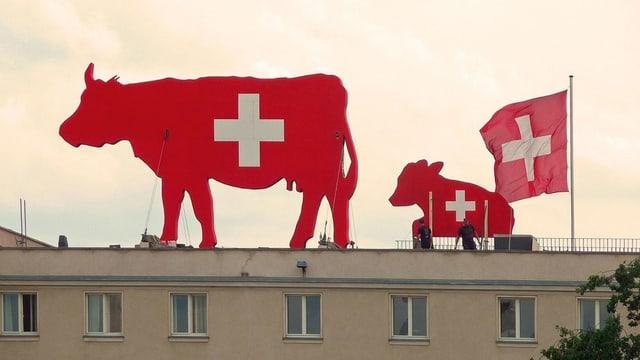 Kühe mit aufgemaltenm Schweizerkreuz auf der Schweizer Botschaft in Berlin.