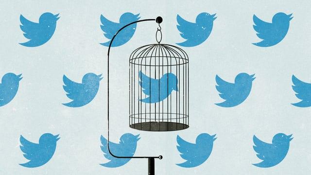Twitter-Vögeln auf einer Tapete. Ein Twitter-Vögelchen ist in einem Käfig eingesperrt.
