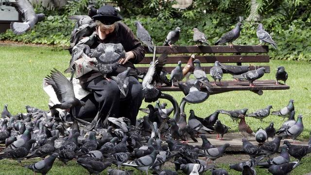 Eine Frau sitzt auf einer Bank, um sie flattern Tauben.