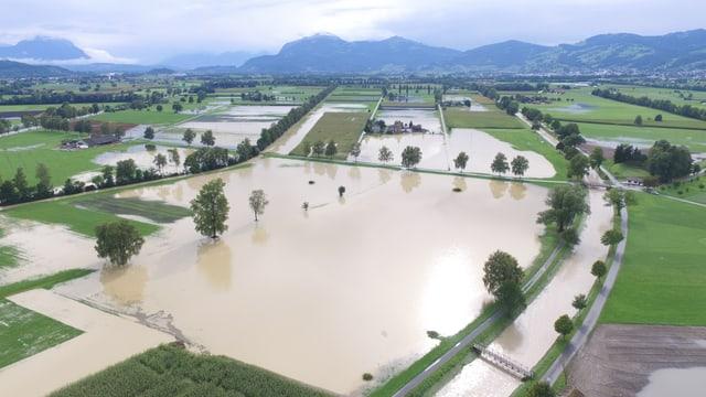 Überflutete Felder in Balgach