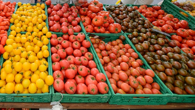 tomatas en differentas colurs