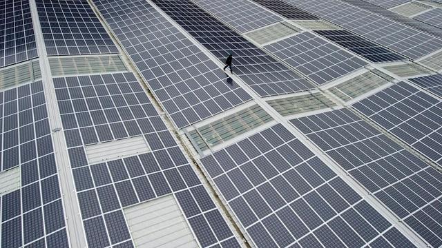Initiative will Energie aus erneuerbaren Quellen fördern - beispielsweise die Photovoltaik.