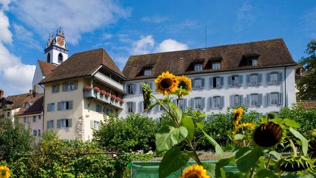 Altes Gebäude in Altstadt, davor Garten mit Sonnenblumen.