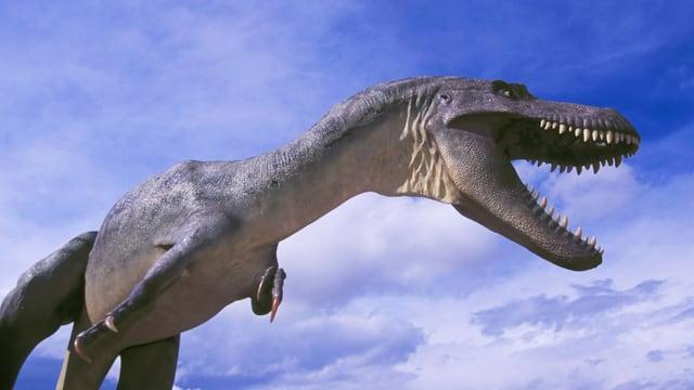 Statue eines Tysannosaurus Rex