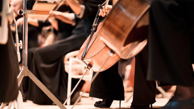 Nahaufnahme eines Cellos im Orchester