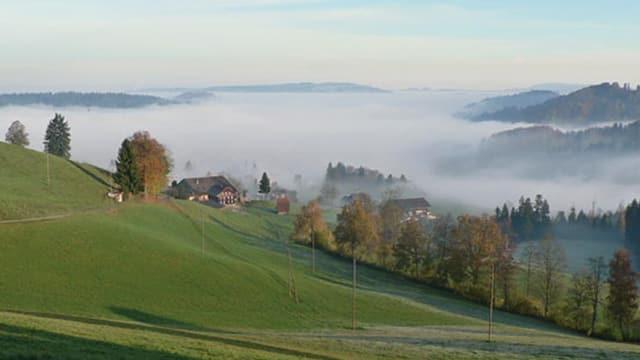 Hügel mit Nebel im Luzerner Hinterland