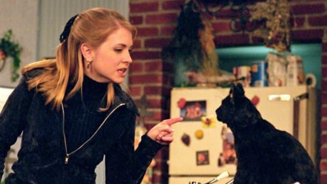 Fernsehhexe Sabrina und ihr sauglattistischer Fernsehkater Salem in der 90er-Version von «Sabrina».