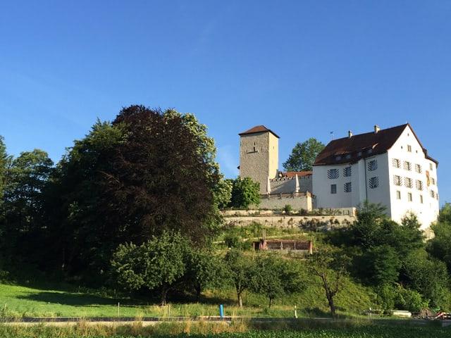 Schloss Wildenstein im Sommer