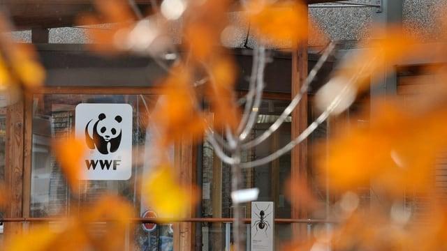 Purtret dal logo da WWF, cun si il panda nair ed alb.