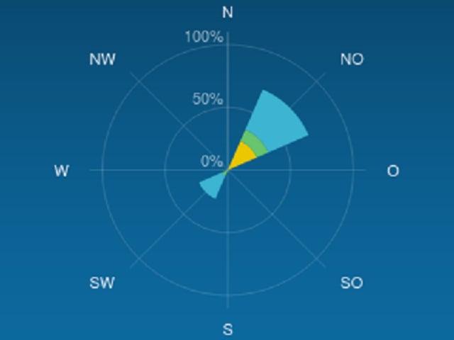 Ein Screenshot einer Windrose.