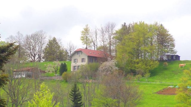 Bergschule Brunnersberg