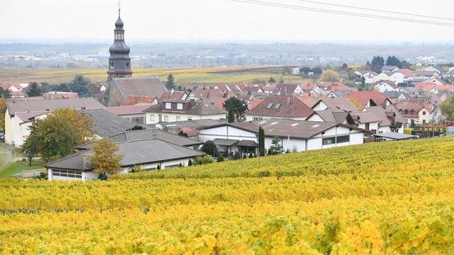 Kallstadt in Deutschland