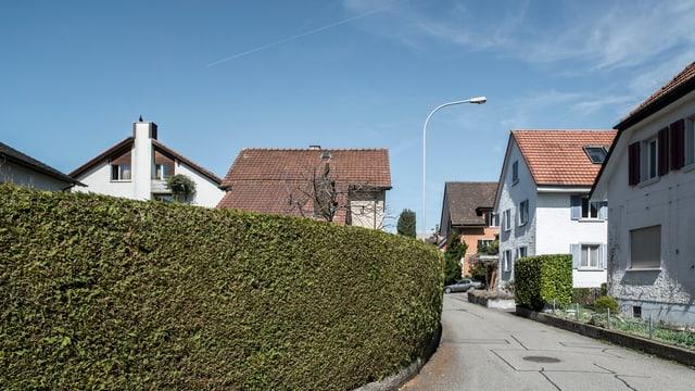Hecke, kleine Strasse, Häuser.