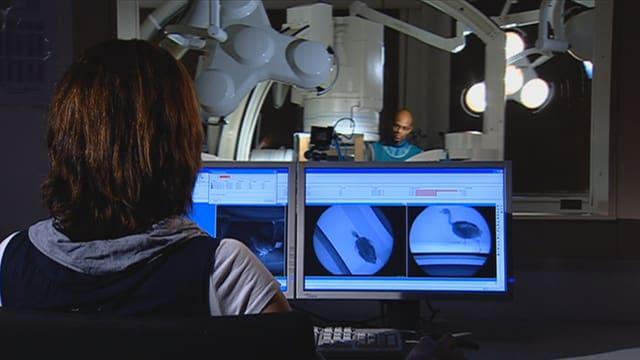 Eine Mitarbeiterin von Fischer analysiert im Labor der Uni in Jena die Filmaufnahmen aus der Röntgenanlage.