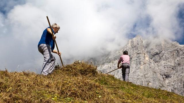Bergbauern beim Heuen.