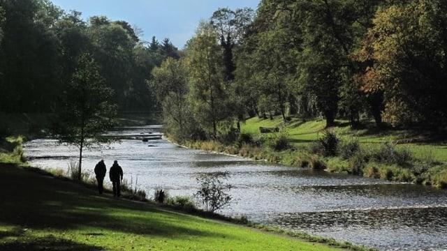 Die Wiese kurz vor der Mündung in den Rhein, mit zwei Spaziergängern am Ufern.
