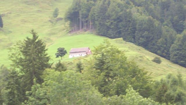 Alp Fischegg