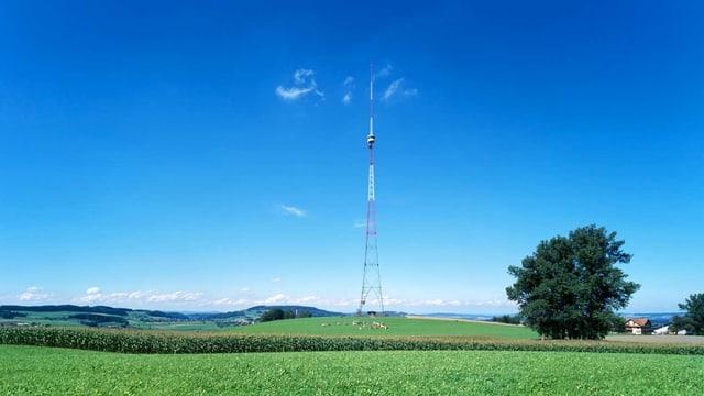 Eine filigrane Sendeantenne auf einem Feld.