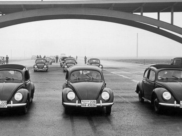 Zu sehen drei VW-Käfer.