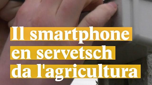 Laschar ir video «Il smartphone en servetsch da lagricultura»