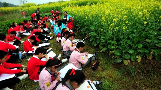 Eine Schulklasse sitzt auf einer Wiese über ihre Hefte gebeugt.