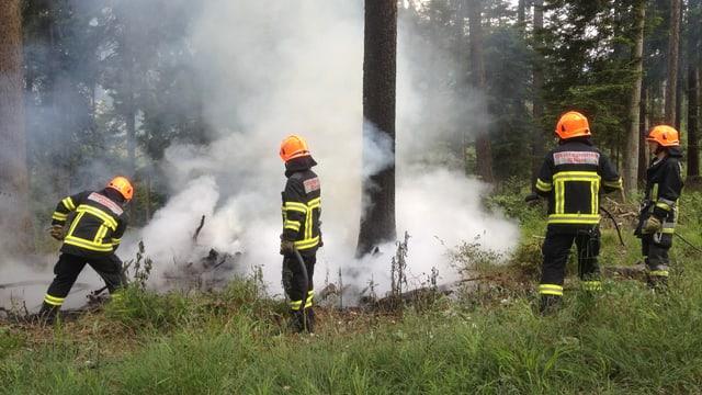 Feuerwehrleute löschen ein Feuer im Wald, viel Rauch.