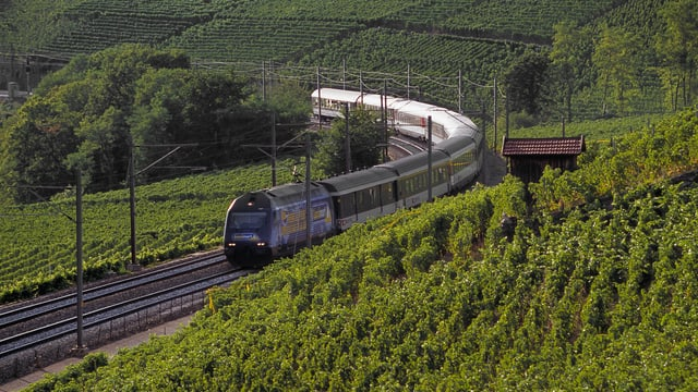 Ein Zug fährt durch die Lavaux.