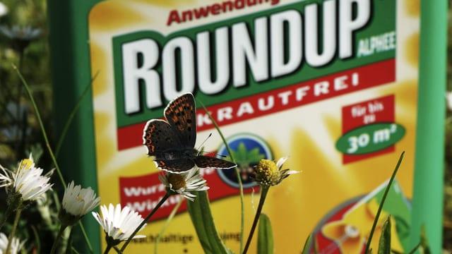 Schmetterling vor einer «Roundup»-Plastikflasche. In der Schweiz sind nur noch Restbestände dieses Herbizids erhältlich.