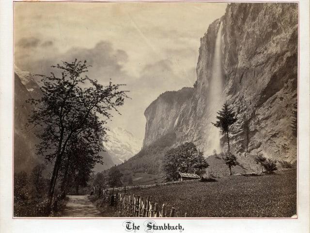 Staubbach